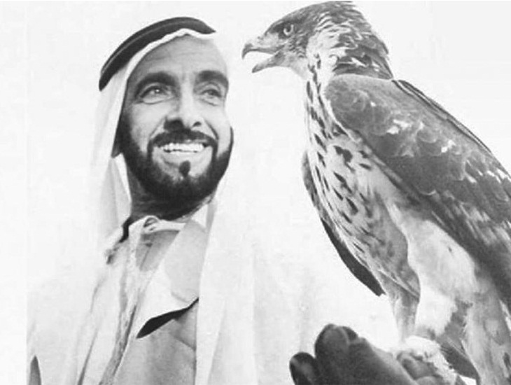 Zayed and Shaheen